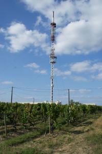 Pour les vignerons de Chaume, l'antenne TDF en place depuis 40 ans gâche assez le paysage pour qu'on évite d'en implanter une deuxième à quelques dizaines de mètres. ©P.TOUCHAIS