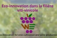 Environnement : le projet Winenvironment se termine.