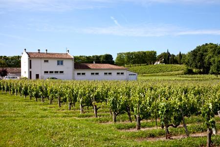 Le 5 mai, l'école primaire de Villeneuve était exposée à des traitements sur deux des propriétés vinicoles qui l'entourent. ©P. ROY