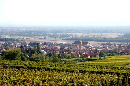 Vue des vignes entourant Eguisheim, élu «village préféré des français» par l'émission de France2, mardi 4juin. ©OFFICE DE TOURISME EGUISHEIM ET ENVIRONS