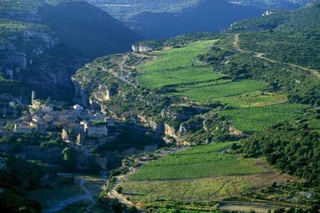 Les vins de la région Languedoc-Roussillon se sont très bien vendus à l'export depuis le début de l'année. © P. ROY