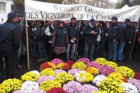 Le 5 octobre, les vignerons ont manifesté devant l'Assemblée nationale aux côtés des arboriculteurs, maraîchers et horticulteurs contre l'article 60 de la loi de finances 2013. © B. COLLARD