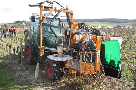 La machine à tirer les bois de Provitis s'accommode du palissage existant et permet de tirer trois hectares de bois par jour. © M. CAILLON