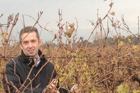 Jérôme Despey se félicite de la prolongation de l'OCM vin.