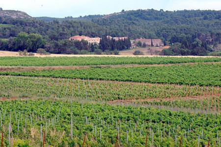 Le Languedoc-Roussillon semble sortir en 2013 de la crise qui avait débuté en 2005.©L.LECARPENTIER