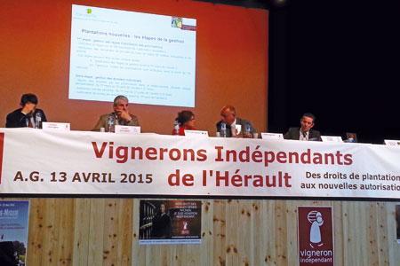 Les autorisations de plantation ont été abordées à l'assemblée générale des Vignerons indépendants de l'Hérault. ©VI de l'Hérault