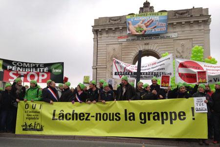 Les vignerons champenois défilent auxcôtés desagriculteurs pour exprimer leurras-le-bol àChâlons-en-Champagne, lemercredi 5novembre. ©E.JODIER