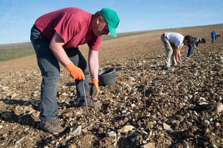 Les jeunes agriculteurs ne bénéficieront plus d'aides à la restructuration à partir de 2016. ©P.GLEIZES