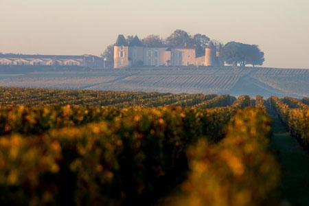 La vallée du Ciron baigne à l'automne dans une brume qui favorise le développement de la pourriture noble, trésor du Sauternes. ©P.ROY