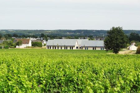 Inauguré le 7juillet, un Vinopôle vient de voir le jour à Amboise (Indre-et-Loire). © I. PROUST