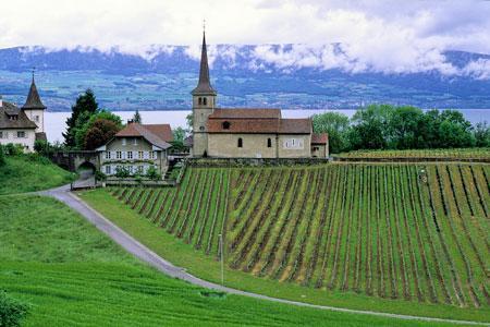 En Suisse, dans le canton de Vaud, un article impose déjà aux restaurateurs de faire figurer à leur carte au moins un vin du vignoble régional. ©DR