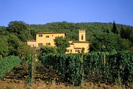 La production de vins italiens se vend pour moitié à l'étranger, la consommation de vin en Italie ayant atteint un niveau historiquement bas. ©P.ROY