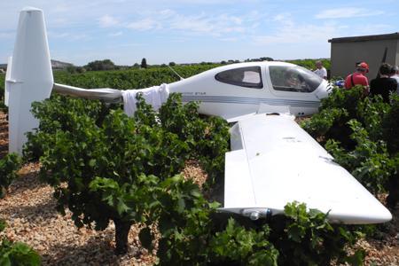 Hérault : une parcelle de vigne sert de piste d'atterrissage. © I. JUPIN/MIDI LIBRE