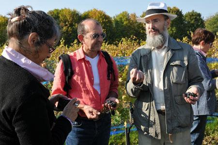 Patrice Bersac (à droite), président des Vignerons franciliens réunis, lors d'une séance pédagogique pour des adultes dans la vigne du parc départemental du Sausset, à Villepinte (Seine-Saint-Denis), qui produit un vin blanc sec de chardonnay et un vin rouge de pinot noir. © A. GUIET