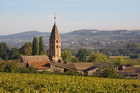 La Bourgogne a su éviter les querelles de clochers à propos du financement de son interprofession. © BIVB/ARMELLEPHOTOGRAPHE.COM
