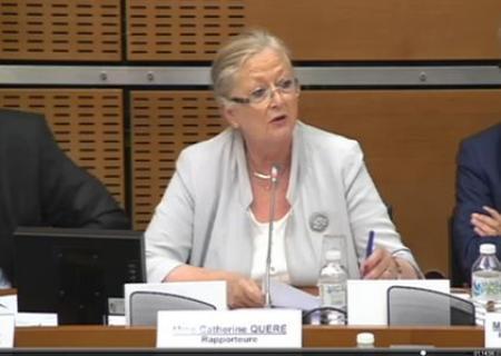 Catherine Quéré, députée PS de Charente-Martime et viticultrice, lors de la remise du rapport à l'Assemblée nationale. ©CAPTATION VIDEO ASSEMBLEE NATIONALE
