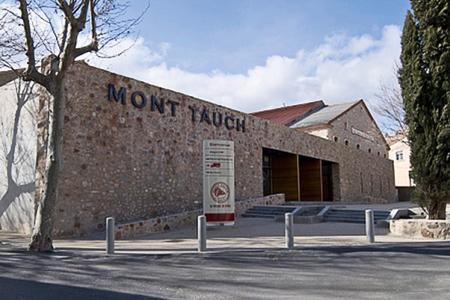 La cave de Mont Tauch risque la liquidation judiciaire. ©OTDESCORBIÈRESSAUVAGES