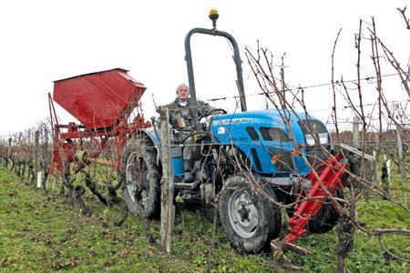 Pour faire face aux dégâts croissants de l'esca, un vigneron de Bourgueil (Indre-et-Loire) a mis au point trois outils pour mécaniser la complantation. © M. CAILLON