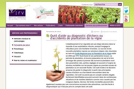 L'IFV met en ligne un outil pour comprendre les raisons pour lesquelles une plantation échoue.