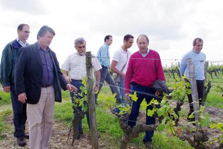 La chambre d'agriculture a sollicité l'administration pour faire constater les dégâts par une mission d'expertise. © G. ARTIGUE