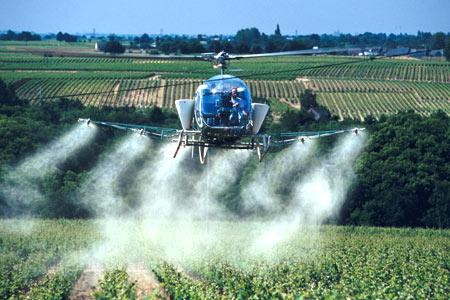 Vigne : le traitement par hélico en voie d'extinction. © C. WATIER