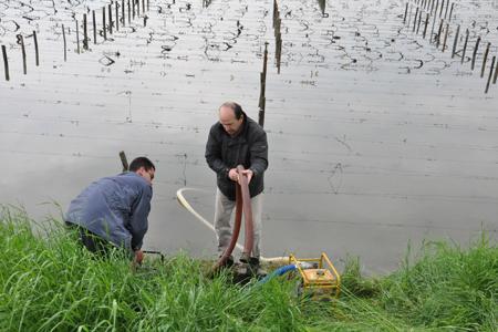 Bourgogne : des pompes dans les vignes pour vider l'eau. © LE BIEN PUBLIC/M. PROTET/MAXPPP