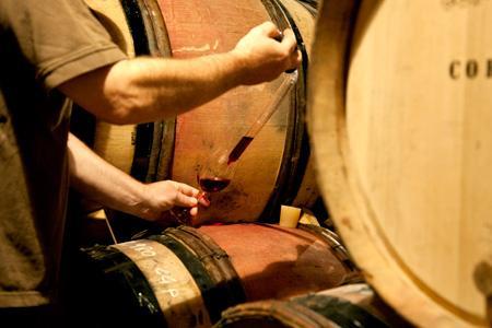 Des chercheurs espagnols ont montré que l'espèce de levure S. pombe est très intéressante pour l'élevage de vins rouges sur lies. © P. ROY