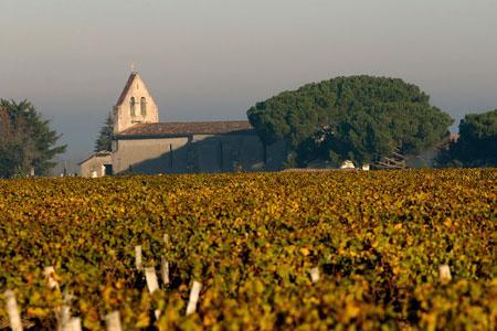 La cartographie des sols du Sauternais va permettre aux viticulteurs de la région de mieux choisir leur matériel végétal. ©P.ROY