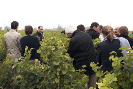 Laurent Kraft, au micro, espère pouvroi acheter des raisins pour compléter sa petite récolte. ©I.PROUST