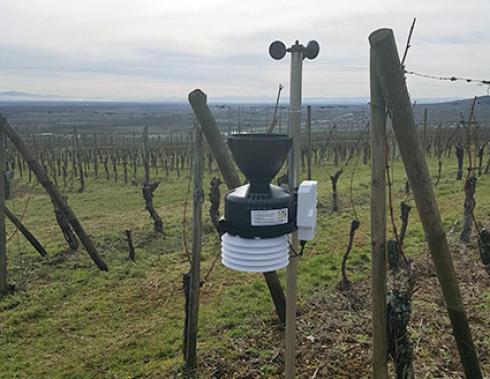 Une quarantaine de stations de ce type ont été installées pour couvrir tout le vignoble alsacien. © CAC