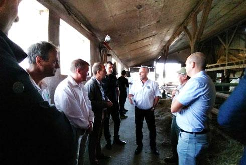 Afin de mieux comprendre la production, des chefs bouchers et des responsables de SystèmeU ont visité une exploitation produisant des génisses charolaises pour leur enseigne.