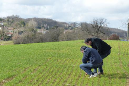 En réaction à ces résultats, Coop de France et la FNA pointent tous les deux une difficulté d'interprétation : comment a été comprise la séparation par les agriculteurs ? © M. COISNE