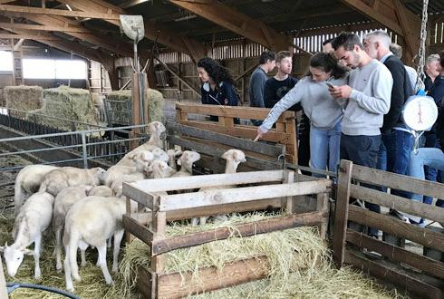 Visite d'une ferme d'élevage bio avec Val de Gascogne, débat sur les filières bio et dégustation d'agneau bio. © COOP DE FRANCE