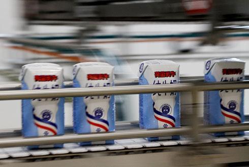 Le client Synutra aurait dénoncé un problème de qualité vis-à-vis des briquettes de lait fournies par l'usine MLC de Méautis, à l'arrêt depuis début août. © A. DUFUMIER