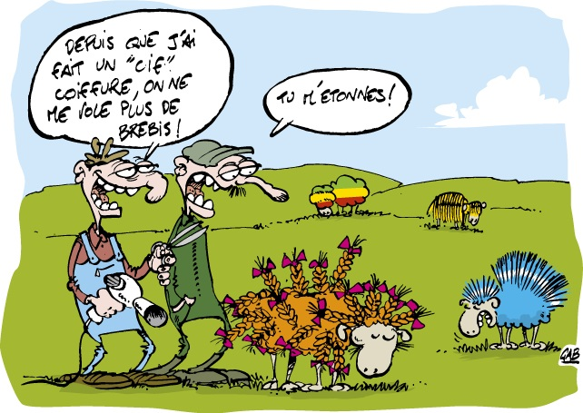 Coiffure ou agriculture ?
